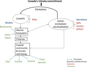 Scenarios for investigating the future of Canada's oceans and marine fisheries under environmental and socioeconomic change